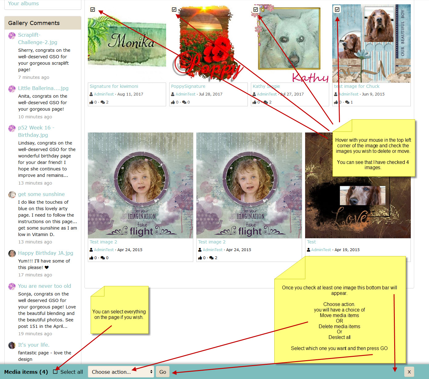 DeletingGalleryImages01.jpg