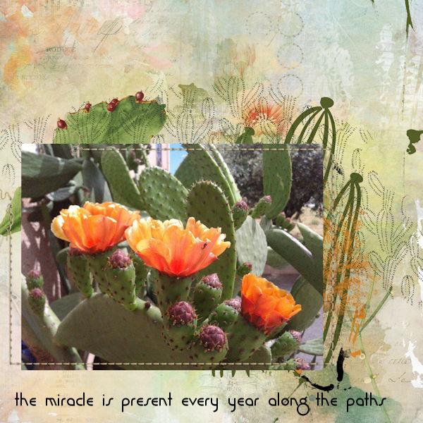 PYP2_Jen Maddock-HeartStrings_Beauty Throuh Adversity.jpg
