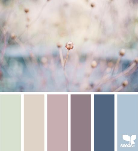 Seeds01s.jpg