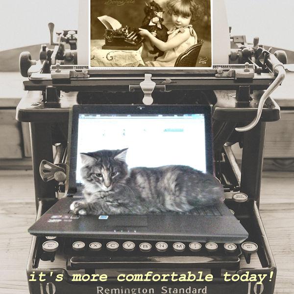 typewriter by pixabay.jpg