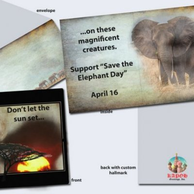 Save-the-Elephant-Day.jpg