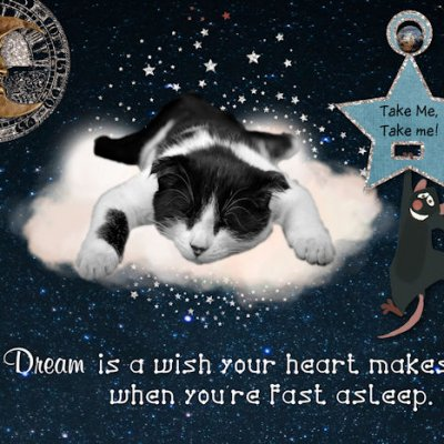 P52 Week 4 Dream - Mouse