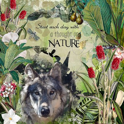Think of Nature
