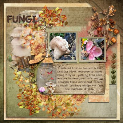 October Recipe by Numbers Challenge - Fungi