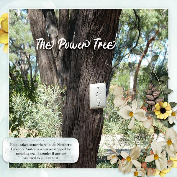Big Photo Challenge - The Power Tree.jpg