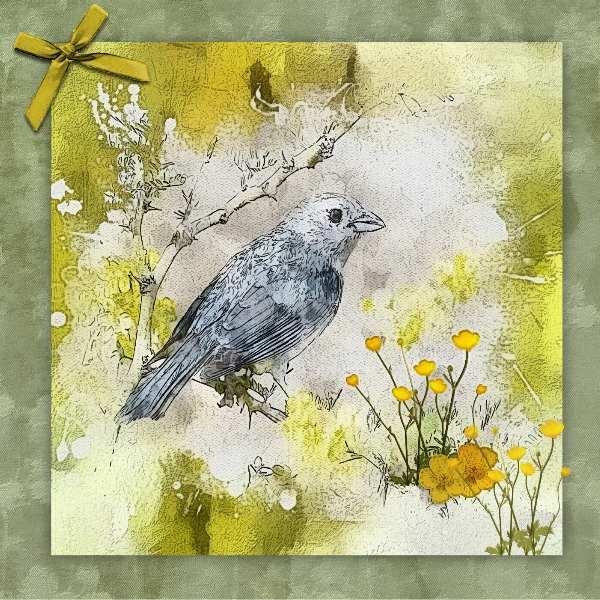 Bird with Buttercups ....