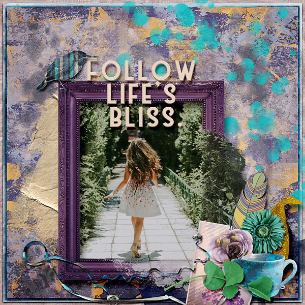 Follow life's bliss