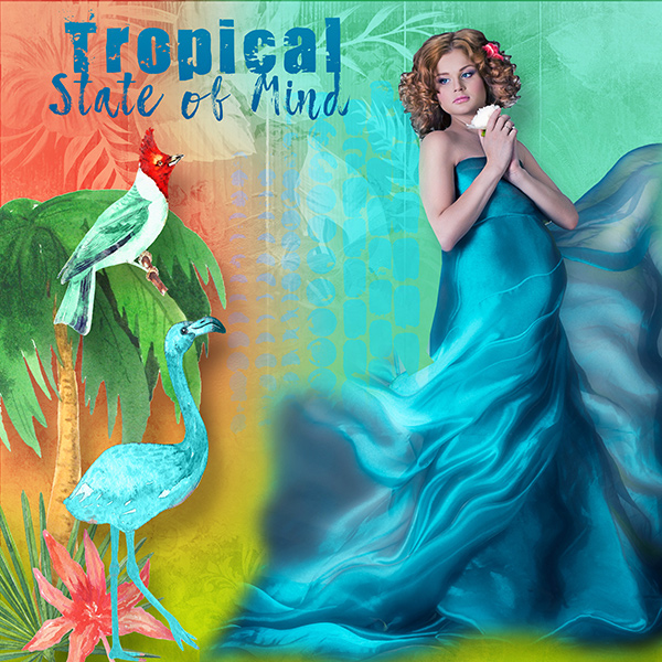 P52 Week 46 (Nov 15-21): T - Tropical