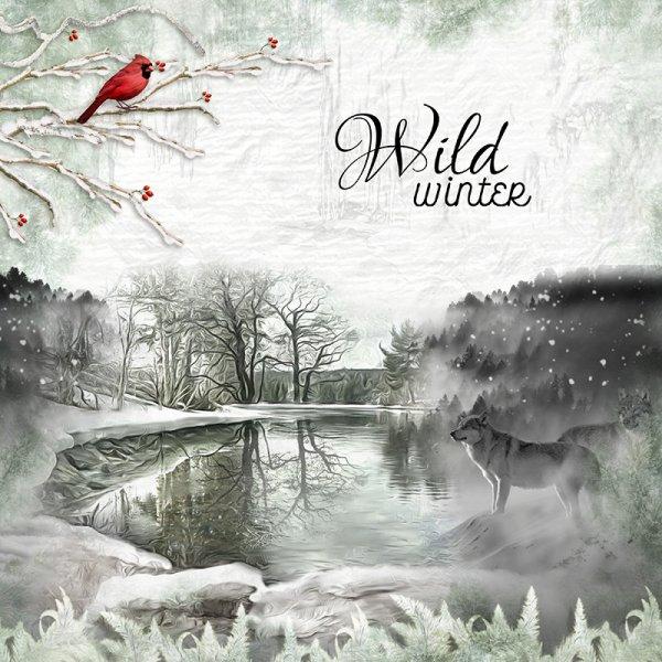 wild-winter.jpg